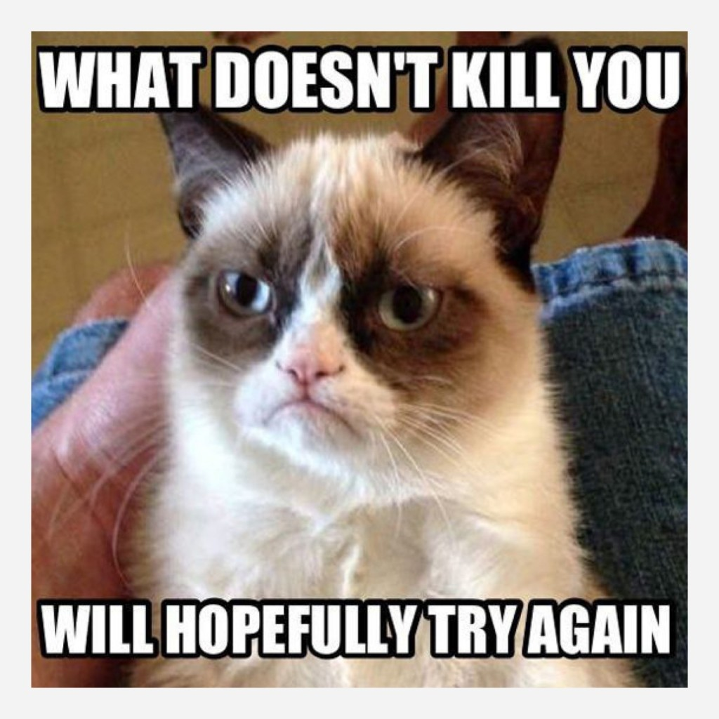 grumpy-cat-what-doesnt-kill-you